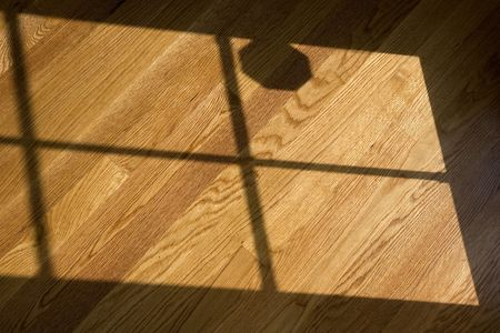 Light from a window showing on a freshly polished hardwood floor Stock Photo