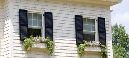 windows: Window flower boxes on a white siding  with black shutters