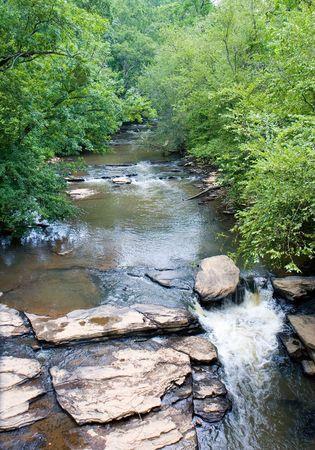 A rocky stream through a quiet forest Reklamní fotografie
