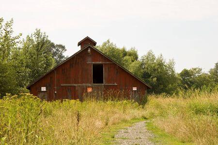 Een oude rode schuur op een gebied van onkruid Stockfoto