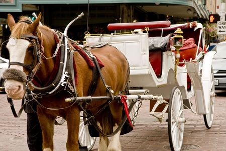 A horse and carriage in a busy urban street