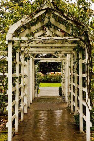 entrance arbor: A wooden arbor leading into a rose garden