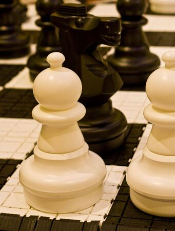 White and black chess pieces on a chess board Stock Photo - 4649711