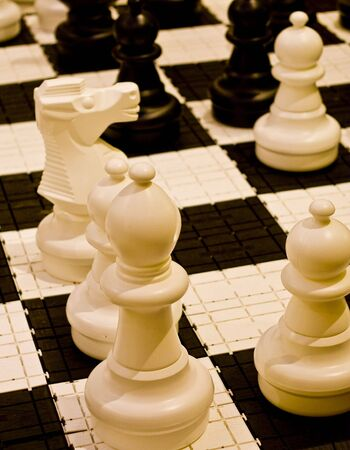 White and black chess pieces on a board Stock Photo - 4756002