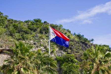 A caribbean flag in front of a tropical mountain