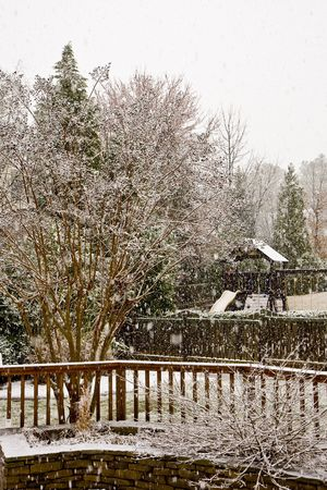 A residential back yard in a snow shower photo