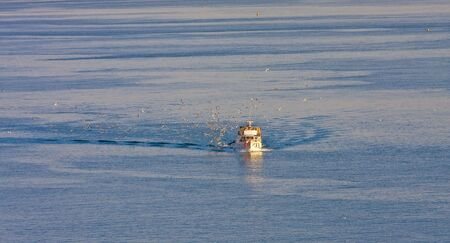 returning: A fishing boat returning in early morning with the days catch Stock Photo