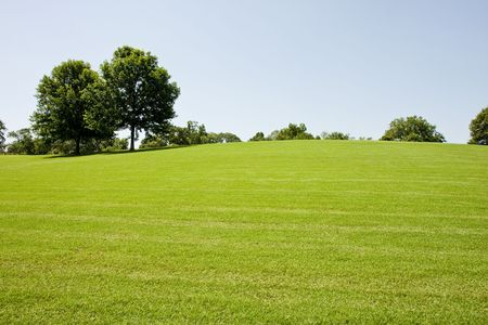 A long green grassy hill with trees in a public park photo