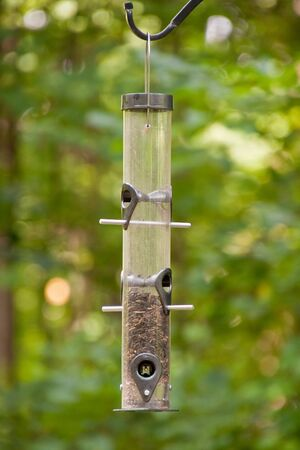 A hanging bird feeder in a forest