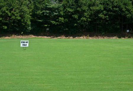 fescue: A fresh new grass field with stay off field sign