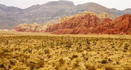 nevada: Desert with scrub brush leading up to red rock hills