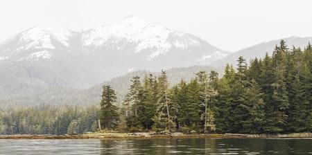 エバー グリーンとアラスカの全景覆われて森と雪に覆われた山