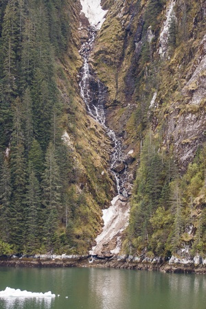 Stream from snow melt flowing down cliff past evergreens into calm green water