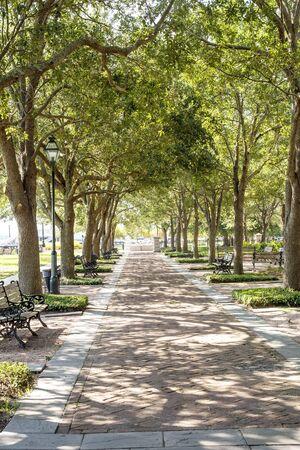 shady: Walkway through a nice shady park on the coast of Charleston, South Carolina
