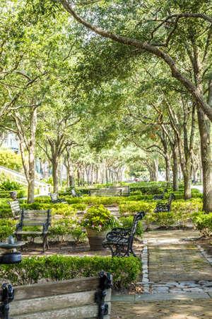 チャールストン、サウスカロライナの海岸の素敵な木陰のある公園で歩道を設置 写真素材