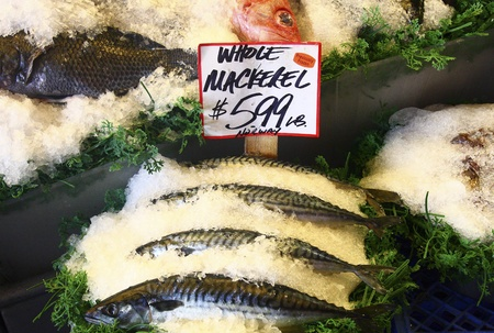 While mackeral on ice at a local seafood market