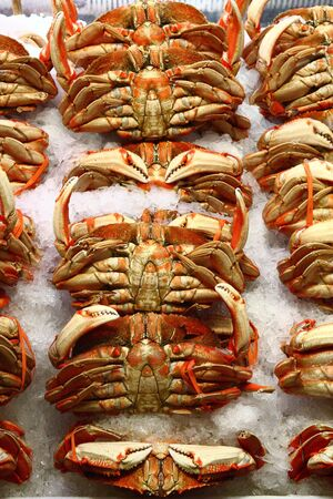 Fresh whole crabs on ice in a seafood market