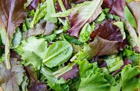 A background of mixed greens, lettuce, and baby spinach