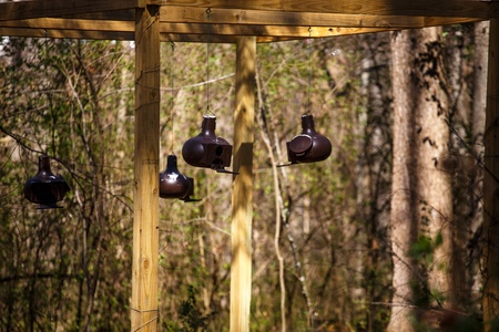 treated: Birdhouses hanging from treated lumber timbers in a forest Stock Photo