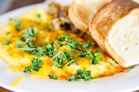 Cheese Omelet Garnished with Parsley with Toast