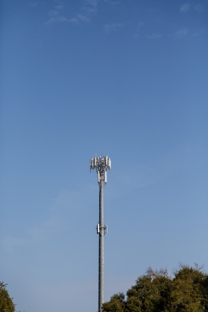 A cell phone tower under clear blue skies beyond trees