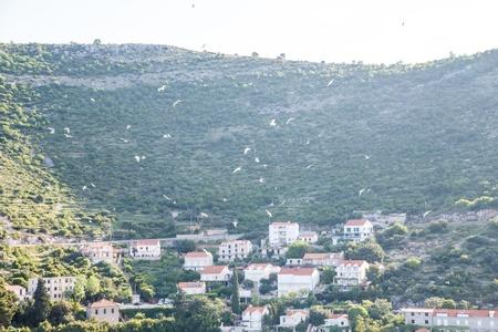 Luxury Resort Condos on the coast of Croatia on the Adriatic Sea Reklamní fotografie
