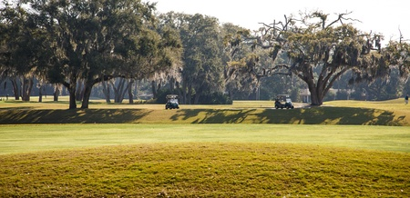 Two golf course parked in the shade of oak trees on a southern golf course 版權商用圖片