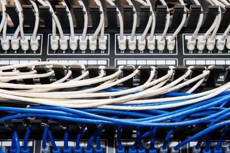 patch panel: Blue and white ethernet cables plugged into a switch and patch panel