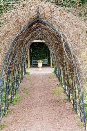 An arbor in winter over a path leading to a park bench photo
