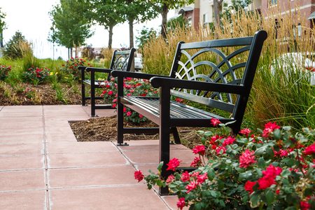 Two black benches in a landscaped garden near a road Stock Photo
