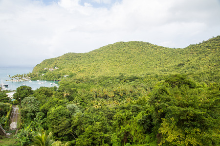 lucia: View of Marigot Bay from hilltop in St Lucia