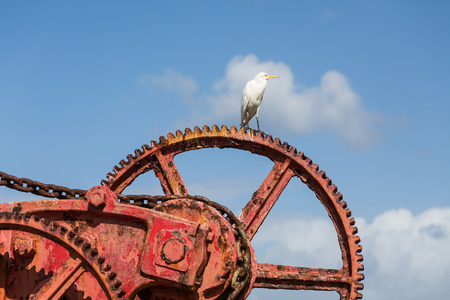 An old rusty, red crane on the island of St Croix photo