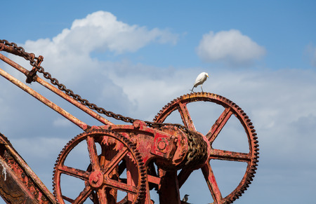 An old rusty, red crane on the island of St Croix with a white crane or egret on top photo