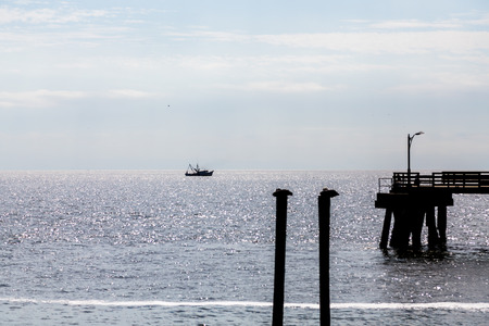 shrimp boat: Pelicans on posts, an old pier and a shrimp boat silhouetted in a sunny sea