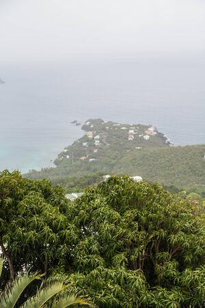 Lush Tropical foliage overlooking foggy bay on St Thomas