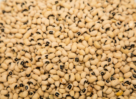 eyeing: Black-Eyed peas useful for a background or texture