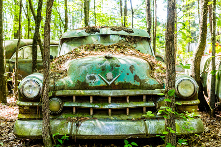 rusty car: Giant old green hulk of a rusted out car in the trees