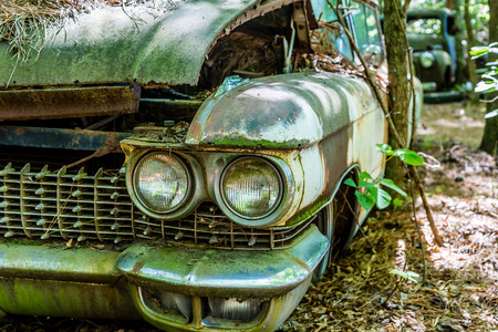 A grungy old car in the woods with grill and twin headlights