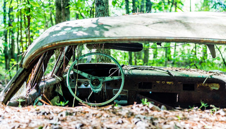 rusty car: An old wrecked car in the woods with glass broken out.