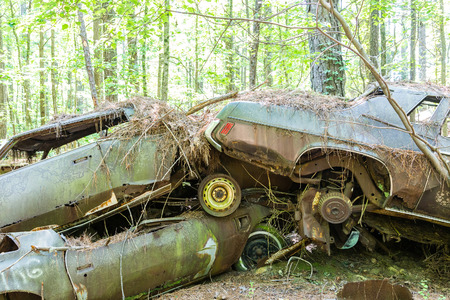 rusty car: Pile of old abandoned cars in the woods
