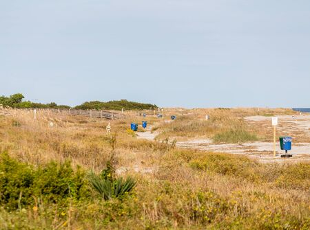 sea oats: A beach with grass and sea oats dotted with blue trash and recycling cans Stock Photo