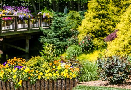 jardines con flores: Flores, arbustos y árboles de hoja perenne por un puente de madera Foto de archivo