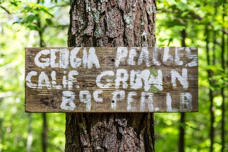 grown: Sign advertising Georgia peaches, California grown Stock Photo