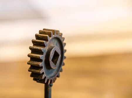 Single gear from an old machine in window light