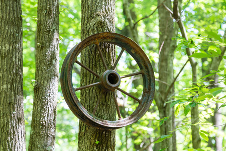 spokes: An old metal wheel with spokes hanging from trunk of tree Stock Photo