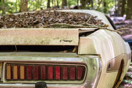 abandoned car: Abandoned antique car Stock Photo