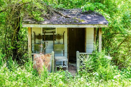 shack: An Old Shack Overgrown in Woods with two chairs