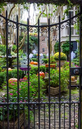 wrought: Halloween Garden beyond wrought iron gate