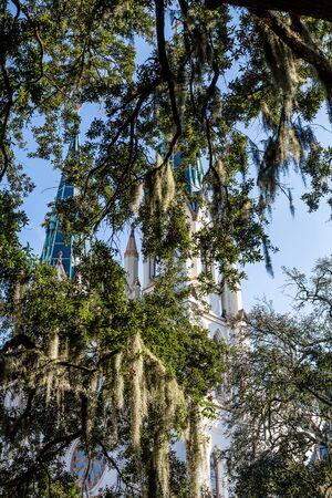 steeples: Church Steeples Through Spanish Moss in Savannah Stock Photo
