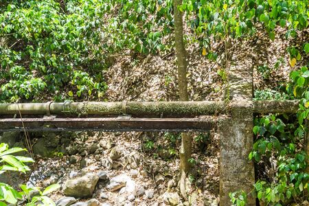 tropics: An Old Water Pipe in Tropics carrying fresh water